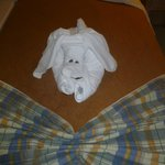 Nice touch from the maid