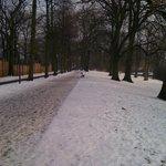 Bruges at xmas 09