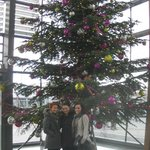 the christmas tree in the lobby!