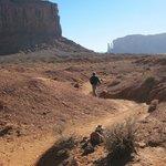 Walking the Wildcat Trail