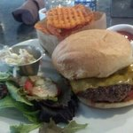 Wild Buffalo Burger