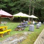 backyard recreation and picnic area