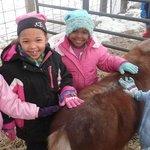 Family fun at Gorman Heritage Farm