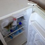 the filthy fridge for $5/day extra charge