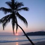Bilde fra Sunbeam Beach Resort