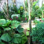 View of large garden from yoga deck