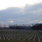 The main vineyard at 868