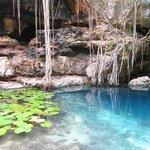 Cenote #2