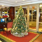 Christmas tree in foyer