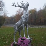 Lodge Mascot Stag Sculpture