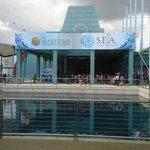 Museum & Aquarium Building