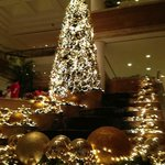Christmas decorations in main lobby