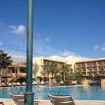 pool area by aloe bar