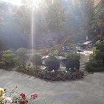 the garden/restaurant