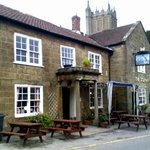 Dolphin - Ilminster
