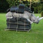 Look at this rhino ;)