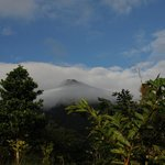 View of Arenal volcano from the hotel grounds