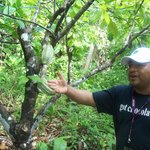 Juan, owner, operator, educator, guide, and master organic farmer