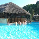 Swim up bar in Maridadi