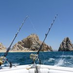 Fishing Cabo San Lucas