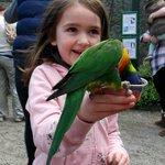 my sister with a lorikeet