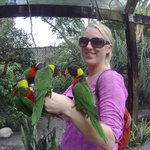 bird feeding (1 of 2 aviaries where you can feed birds)
