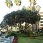 Eden Mar Gardens