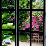 The spectacular profusion of tropical vegetation can be enjoyed from all our bedrooms.