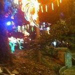 park Xmas lights