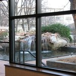 View from restaurant (on site) to fountain