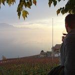 Enjoying wine at the Fonjallaz family vinyard