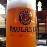 Paulaner Draft