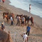 Anyone for horseback riding on the beach?