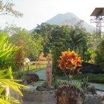 vue sur le volcan du parc et courant d'eaux volcaniques