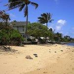 Beach in front of properties