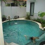 the swimmin pool