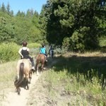 Horse riding at Tenaya Lodge