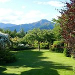 View from Mt Isoble room over garden