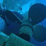 Zenobia propeller