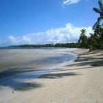 Des plages immenses