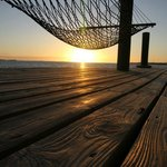 Hammock on our dock