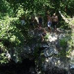 cliff jump at the cenote
