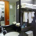 Hampton Inn bath