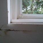 humedades y huecos mosquiteros
