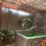 foto del jacuzzi en el patio interno de la habitación