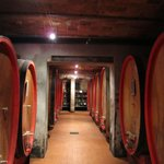 The Wine Vats