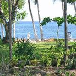 Garden View To Ocean