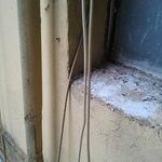 Finestra camera con feci piccioni (molto antigeniche)