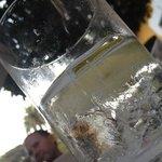 Y al final un Gin Tonic