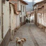 Calle del hostal